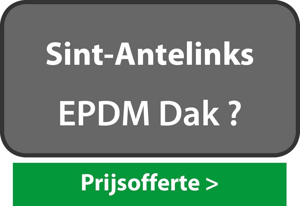 EPDM Sint-Antelinks