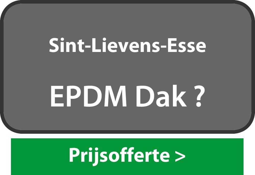 EPDM Sint-Lievens-Esse