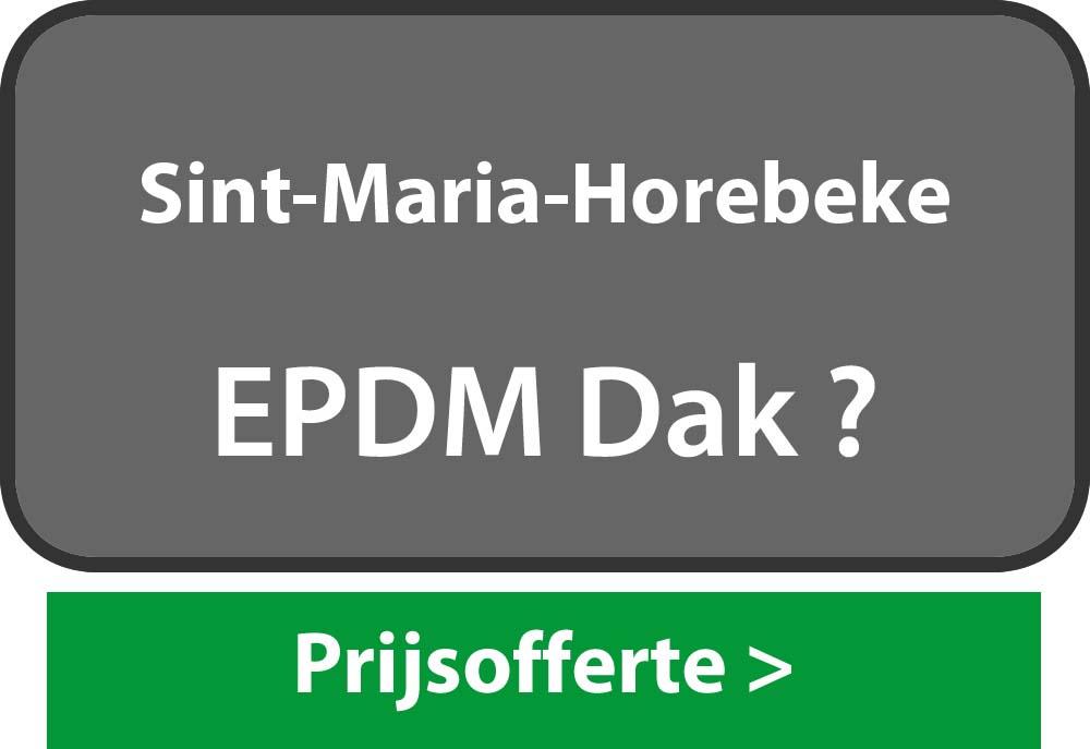 EPDM Sint-Maria-Horebeke